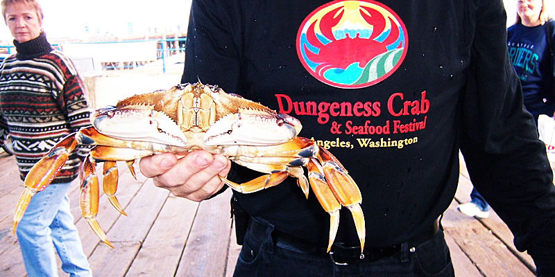 dungeness-crab-t-shirt-w-crab