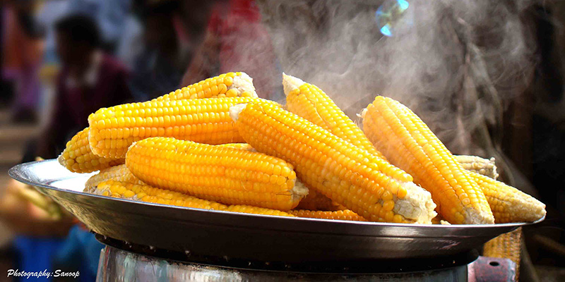 steaming-hot-corn